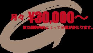 月々 3万円~